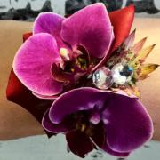 Rannekukka 1. Onnen orkideat
