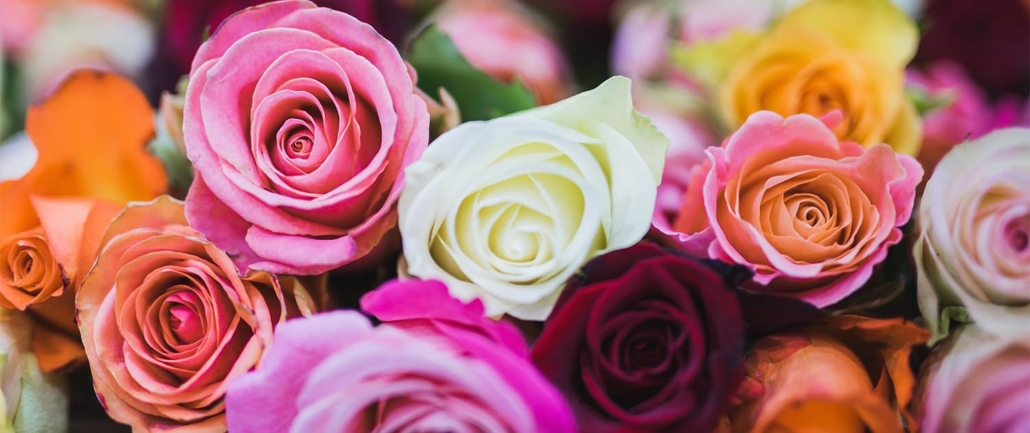 Rakkaudesta kukkiin